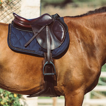 https://www.decathlon.tw/zh/horse-riding-saddle